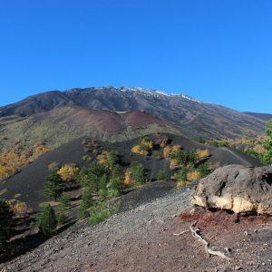 Etna Crateri Sartorius